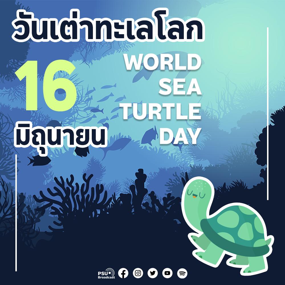 """""""วันเต่าทะเลโลก (World Sea Turtle Day)"""""""